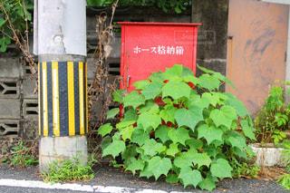 風景 - No.549100