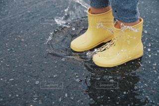 雨の写真・画像素材[605942]