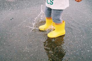 雨の写真・画像素材[605944]