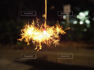 花火の写真・画像素材[683920]