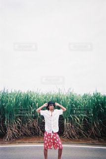 沖縄の写真・画像素材[457104]