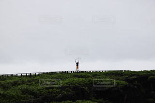 沖縄 - No.537537
