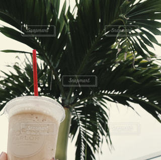 カフェの写真・画像素材[617990]