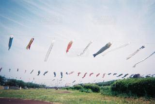 空中に凧の飛行の人々 のグループの写真・画像素材[1240392]
