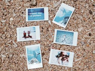 海の写真・画像素材[1446526]
