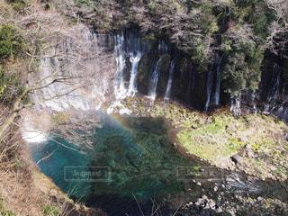 森の中の滝の写真・画像素材[1449747]