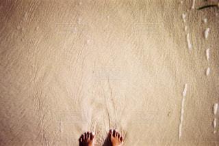 海の写真・画像素材[1800306]