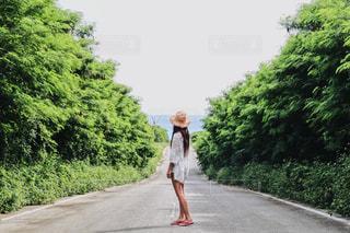 my wayの写真・画像素材[2142249]