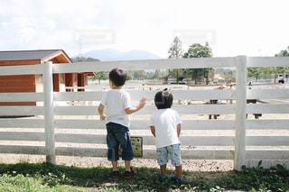 草の上に立っている小さな男の子の写真・画像素材[2174041]