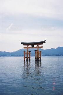 屋外,島,観光,フィルム,広島,厳島神社,厳島,フィルムカメラ,フィルム写真,35mm,フィルムフォト