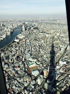 東京,スカイツリー,景色,影,街