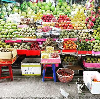 猫,緑,赤,黄色,フルーツ,果物,市場,ベトナム,みどり,看板猫,黄緑,色鮮やか,ランブータン,南国フルーツ,リュウガン,竜眼,フレッシュフルーツ,新鮮フルーツ,ベトナムホーチミン,珍しいフルーツ,甘いフルーツ,フルーツ試食,市場の猫