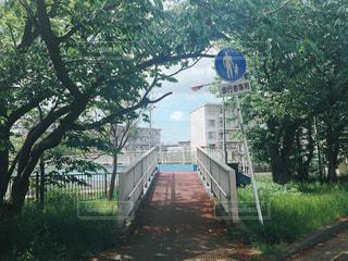 橋,青春,横須賀,地元,裏道,学生時代,恋人ロード,追浜