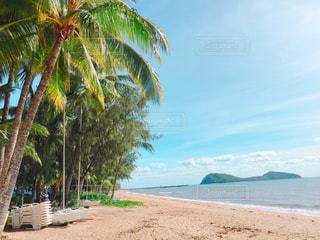 海,南国,ビーチ,砂浜,ヤシの木,オーストラリア,リゾート,ケアンズ,パームコーブ
