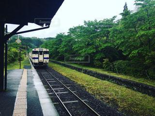 電車の写真・画像素材[1247528]
