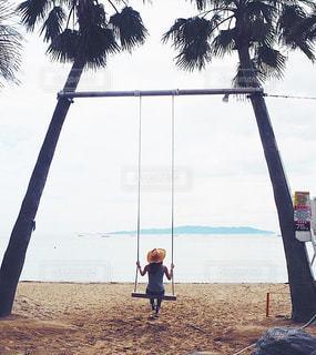 ヤシの木の横に立っている人 - No.872887