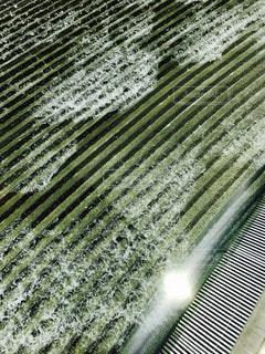 近くに緑色の画面のアップの写真・画像素材[1277337]