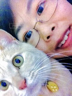 近くに猫を持っている人のの写真・画像素材[1351593]