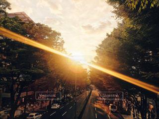 夕陽 - No.573481