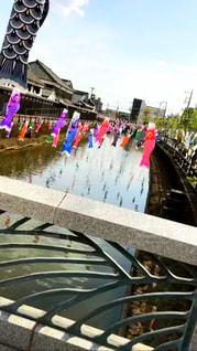 空,春,橋,カラフル,川,鯉のぼり,風,栃木県,蔵の街,栃木市,うずまの鯉のぼり