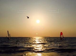 夕暮れ海の上を飛んでいる鳥の写真・画像素材[1292495]