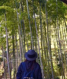 竹林,湘南,女子旅,鎌倉,地元,おさんぽ,長谷寺,長谷,旅好き