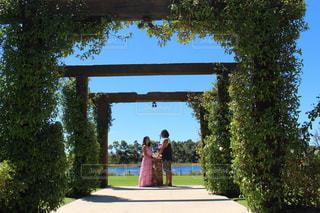 結婚式 - No.442990