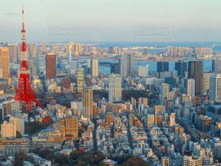 東京タワーの写真・画像素材[570505]
