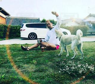 犬の写真・画像素材[461097]