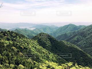 緑の写真・画像素材[465990]