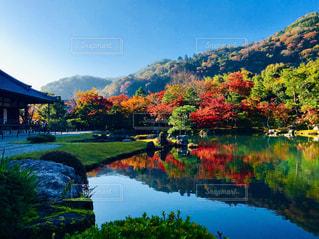 水の体に囲まれた湖の景色の写真・画像素材[906126]