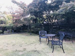 公園のベンチの写真・画像素材[3012844]