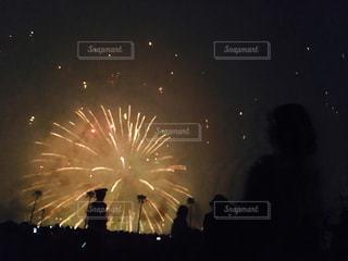 花火の写真・画像素材[3012853]