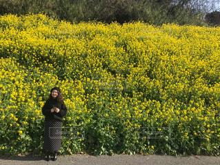 黄色の花の前に立っている人の写真・画像素材[1859577]