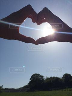 自然,太陽,牧場,光,ハート