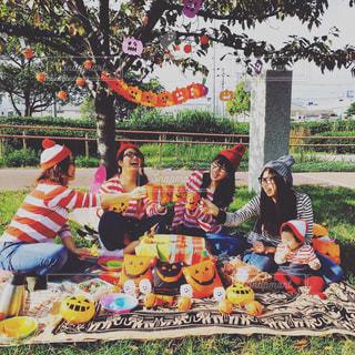 ピクニックの写真・画像素材[831197]