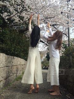 木の隣に立っている男女の写真・画像素材[2315229]