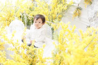 黄色の花の人の写真・画像素材[1865598]