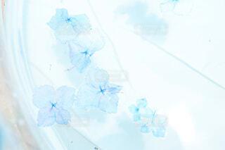 青い背景のガラスの写真・画像素材[4717348]