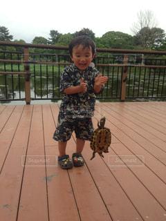 池,子供,亀,服部緑地公園