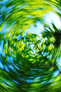 森の写真・画像素材[457144]