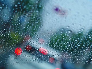 雨の写真・画像素材[550938]