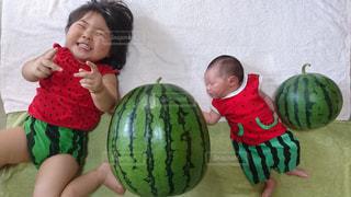 家族の写真・画像素材[521036]