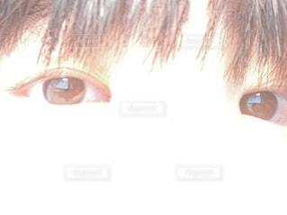 太陽光,目,フラッシュ,両目,裸眼