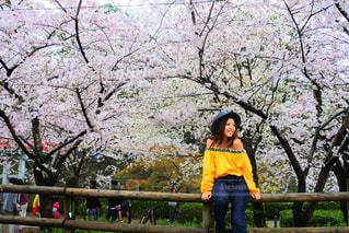 #春コーデの写真・画像素材[452257]