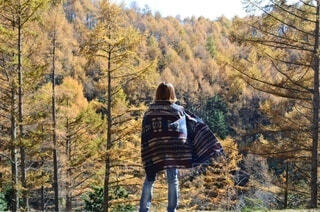 秋の訪れの写真・画像素材[3787605]
