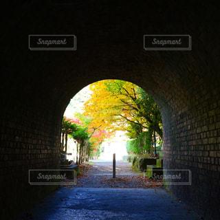 トンネルの中からの紅葉 - No.874191