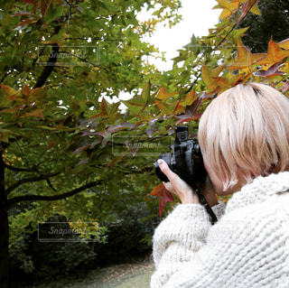 カメラ,撮影,休日