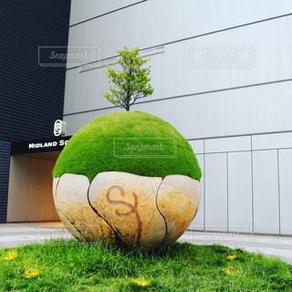 大きな白いボールの写真・画像素材[1170300]