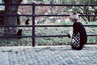 フェンスの前のベンチに座っている人の写真・画像素材[2098400]
